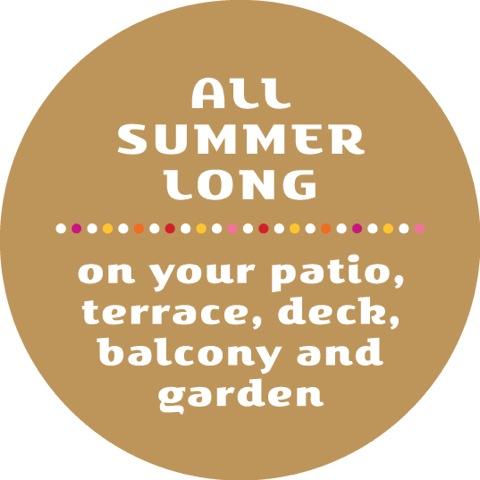 Colorita® - All summer long